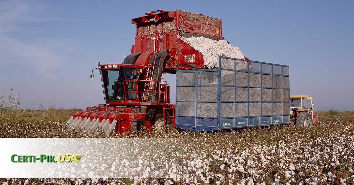Cotton Machine