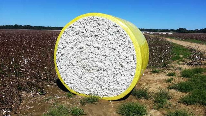How Much Does A Single Bale Of Cotton Weigh