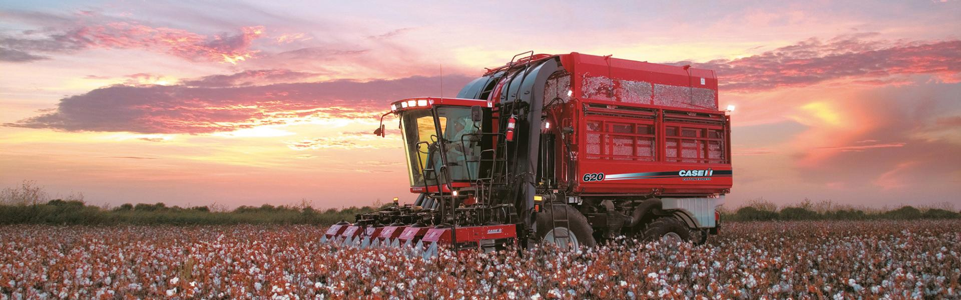 Case IH Cotton Harvester in the sunset